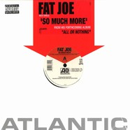 Fat Joe - So much more