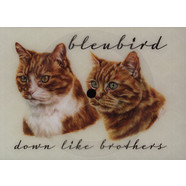 Bleubird - Down Like Brothers