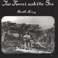 Scott Key - This Forest And The Sea