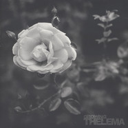 Thelema - Growing
