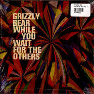 Grizzly Bear - While You Wait For The Others