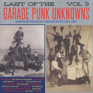 V.A. - Last Of The Garage Punk Unknowns Volume 3