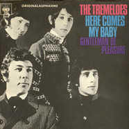 Tremeloes, The - Here Comes My Baby