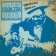 Big Joe Williams - Blues From The Mississippi Delta
