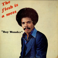 Boy Wonder - The Flesh Is A Mess