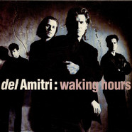 Del Amitri - Waking Hours
