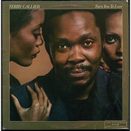 Terry Callier - Turn You To Love