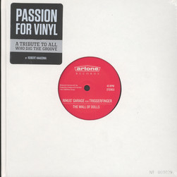 Robert Haagsma - Passion For Vinyl (A Tribute To All Who Dig The Groove)