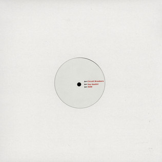 CHICAGO DAMN - The Filth - 12 inch x 1