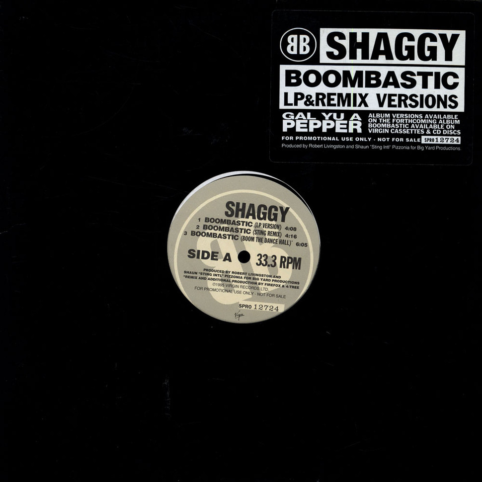 Summary -> Shaggy Boombastic Download - stargate-rasa info