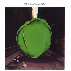 METERS, THE - Cabbage alley - LP
