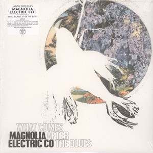 Magnolia Electric Co What comes after the blues