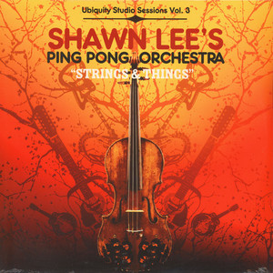 SHAWN LEE'S PING PONG ORCHESTRA - Strings & things - LP x 2