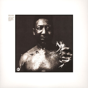 MUDDY WATERS - After The Rain - LP