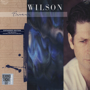 BRIAN WILSON - Brian Wilson (Extended Version) - 33T
