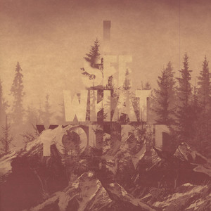 214 - I See What You Did There - 12 inch x 1