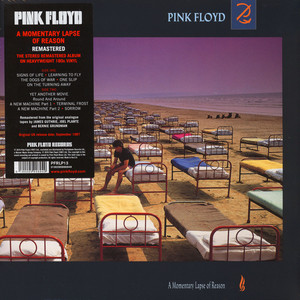 pink floyd a momentary lapse of reason 20th anniversary edition