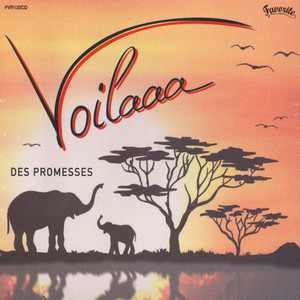 VOILAAA - Des Promesses - CD