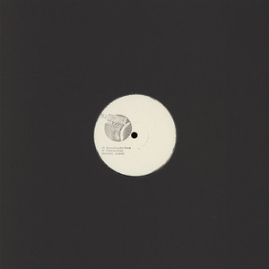 SAL P & DENNIS YOUNG  (LIQUID LIQUID) - Now Paranoid London & Playground Remixes - 12'' 1枚