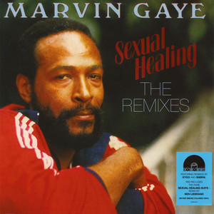 Sexual healing marvin gaye snbrn remix