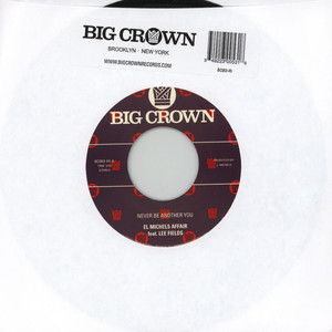 EL MICHELS AFFAIR - Never Be Another You (Reggae Version) Feat. Lee Fields - 7inch x 1