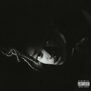 LITTLE SIMZ - Grey Area - CD