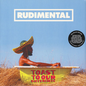 RUDIMENTAL - Toast To Our Differences - 33T x 2