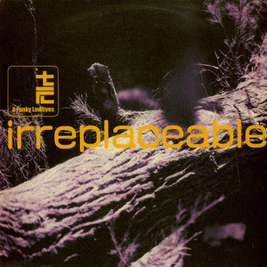 FUNKY LOWLIVES, THE - Irreplaceable - 12 inch x 1