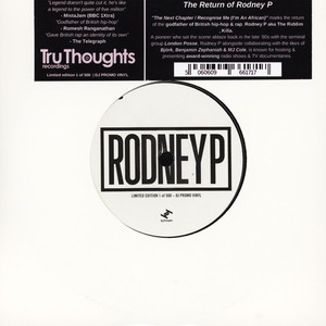 RODNEY P - The Next Chapter / Recognise Me - 45T x 1