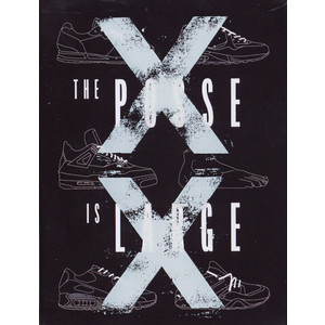 VARIOUS - The Posse Is Large - Cassette