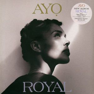 AYO - Royal - Maxi x 1