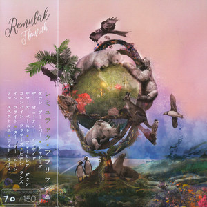 REMULAK - Flourish Picture Disc Edition - 33T