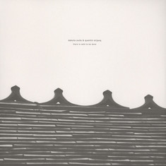 Dakota Suite / Quentin Sirjacq - There Is Calm To Be Done
