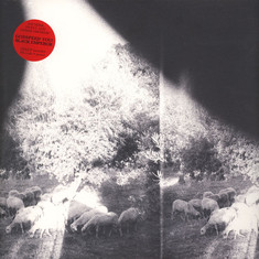 Godspeed You Black Emperor - Asunder, Sweet & Other Distress