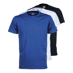 Dickies - Uniontown Slim Fit T-Shirt (Pack of 3)
