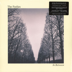 Feelies, The - In Between